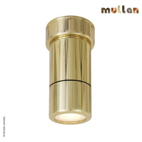 Ennis Brass Ceiling Spot Down Light IP65 by Mullan Lighting