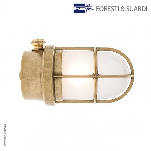 Ceiling / Wall Light With Guard 2296 by Foresti & Suardi
